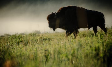 You Can Go To Jail For Doing Citizen Science In Wyoming