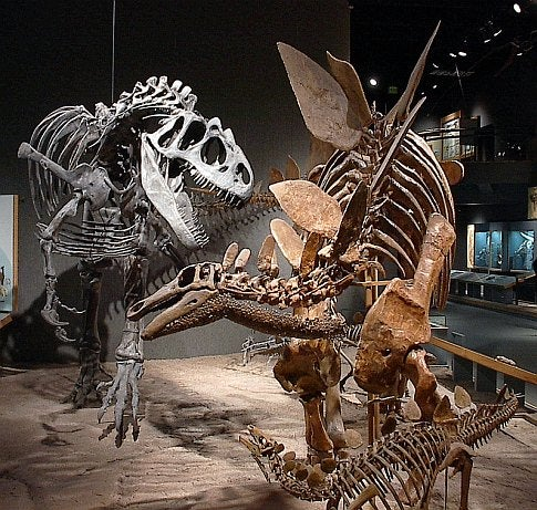Dinosaurs, and the Stories They Tell