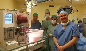 Machine Keeps Human Liver Alive And Functioning Outside The Body For 24 Hours