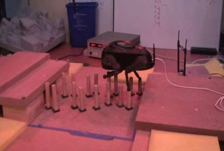 Stumbling, Bumbling LittleDog Can Tiptoe Across Tops of Cylinders
