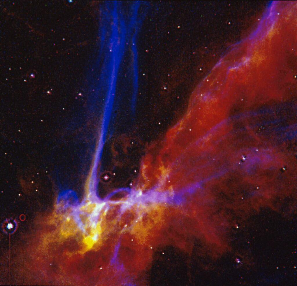 """""""Cygnus"""