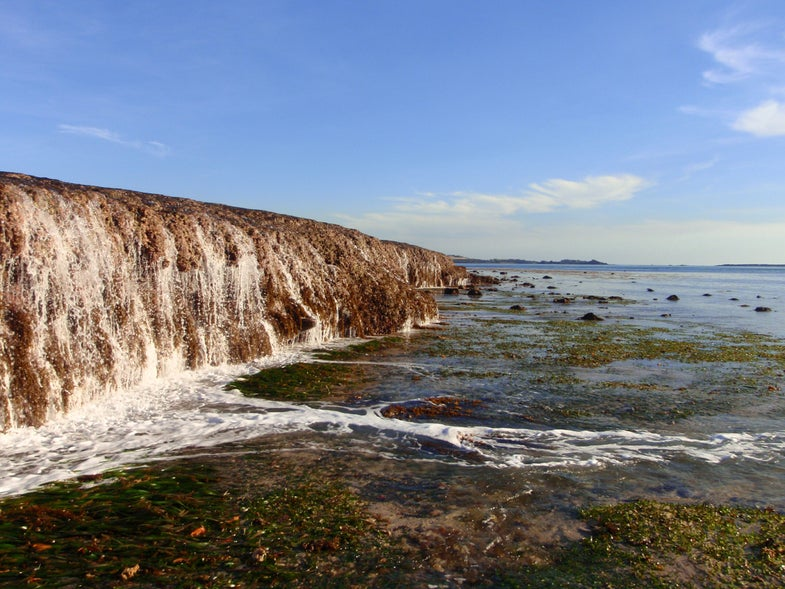 Rapid Sea Level Rise Might Actually Benefit Some Coral Reefs