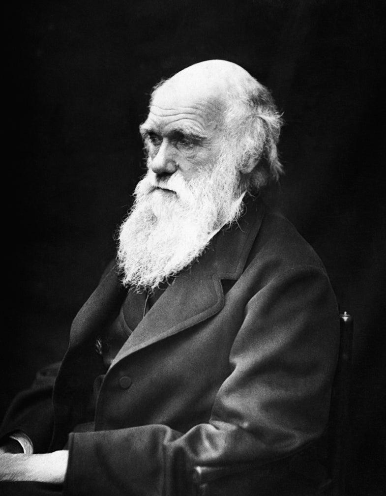 One in Eight U.S. Biology Teachers Teaches Creationism