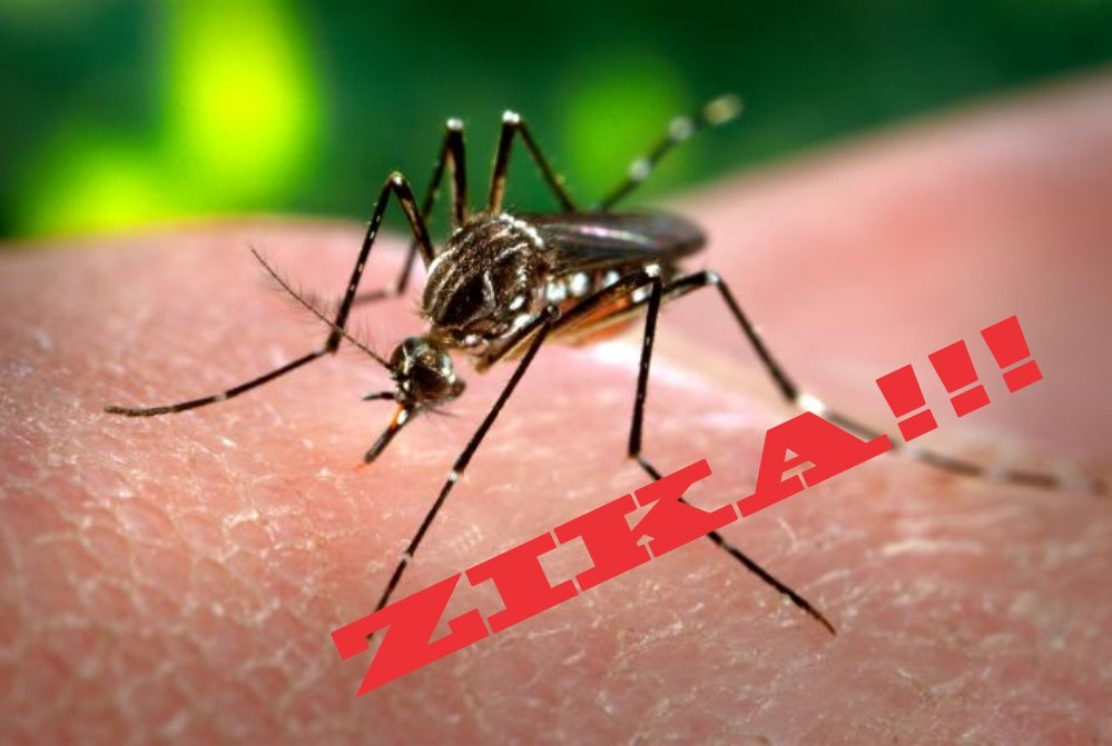 """How Can We Prevent Zika From Becoming The Next """"Fearbola""""?"""