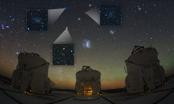 New Dwarf Galaxies Discovered Nearby