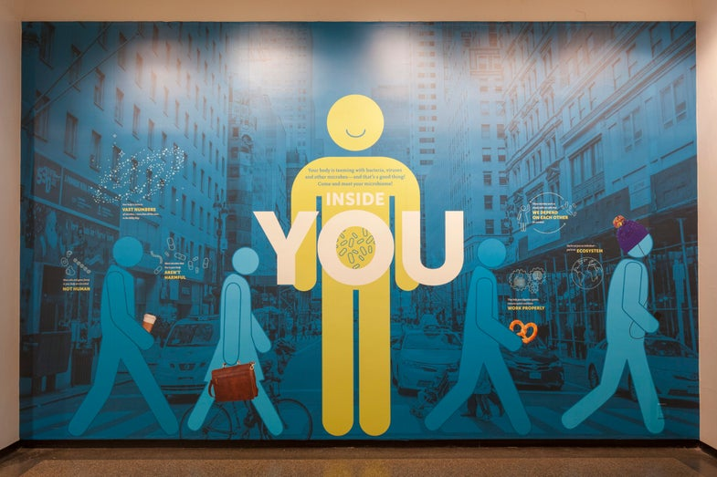 This new museum exhibit tells us to respect the microbes that live on us