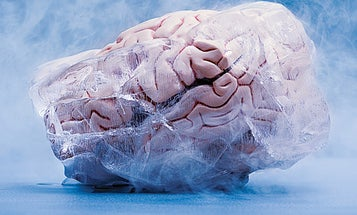 Can 'Brain Freeze' Cause Long-Term Brain Damage?