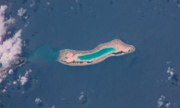Over The Past 60 Years, A Reef Island Has Grown Out Of The Sea
