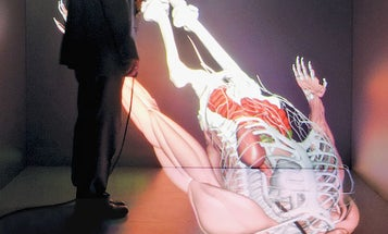 CAVEman 3-D Virtual Patient Is a Holodeck For the Human Body