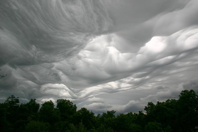 There are still undiscovered species of clouds—and you can find them yourself