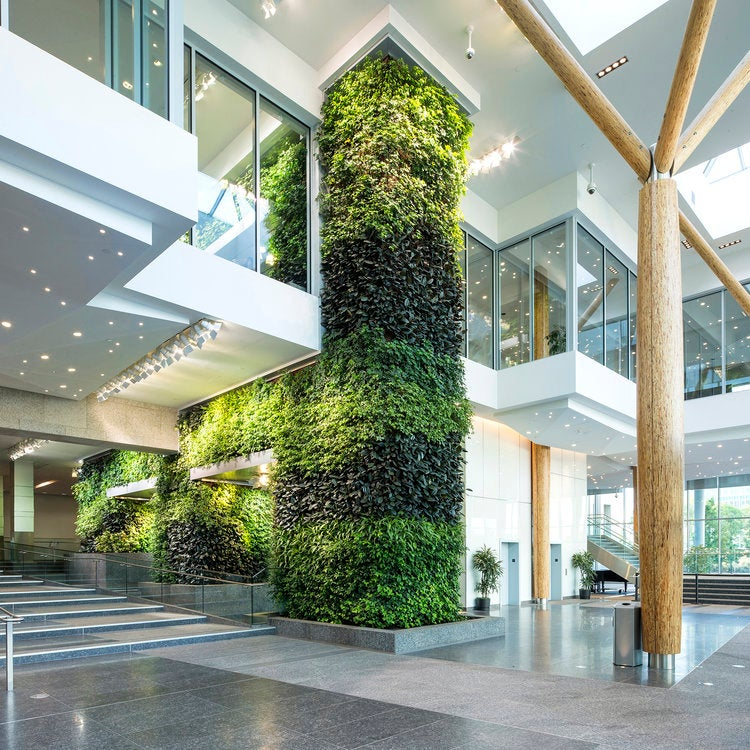 Green wall Green Roofs for Healthy Cities design air filtration