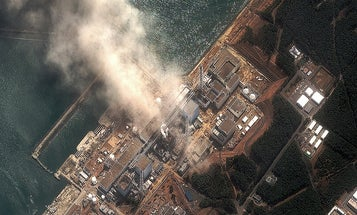 How The Fukushima Nuclear Disaster Made Kids Fat
