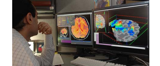 Brain Scans Can Reliably Predict  Future Behavior, Including Eating and Sex