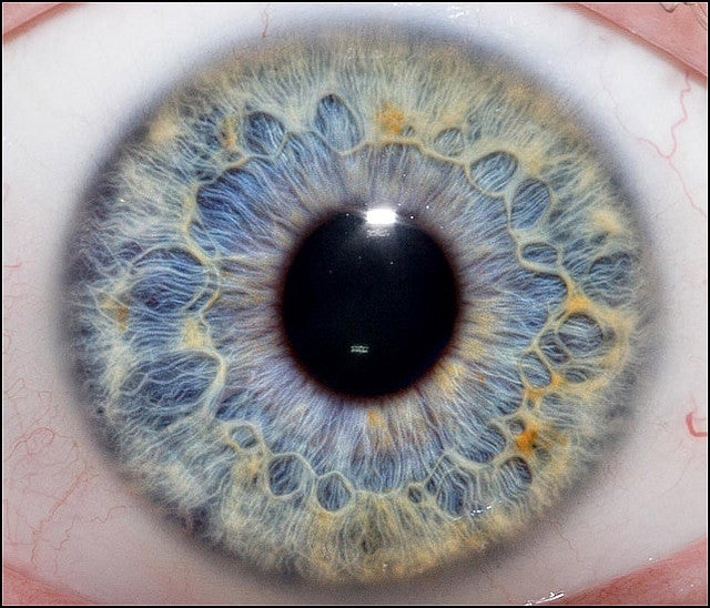 What Our Eyes Say About Our Sexual Preferences