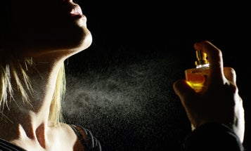 The fumes from spray cleaners and perfumes are a major source of air pollution