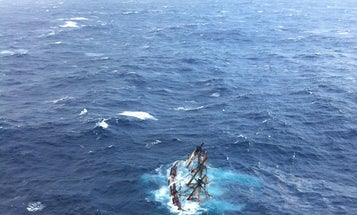 Shipwrecked By Hurricane Sandy: The Strange Tale Of The Sinking Of The Bounty