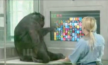 An App That Gives Apes the Ability to Control Robots (This Is a Real Thing)