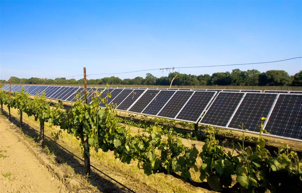 Thieves Use Google Earth to Find and Plunder Wineries' Solar Panels