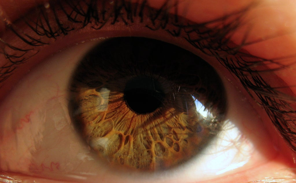New Light-Powered Eye Implants Use Infrared Pulses to Restore Sight