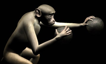 Double The Fun: Monkeys Control Two Virtual Arms With Just Their Thoughts