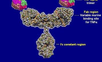 What Is A Biosimilar Drug?