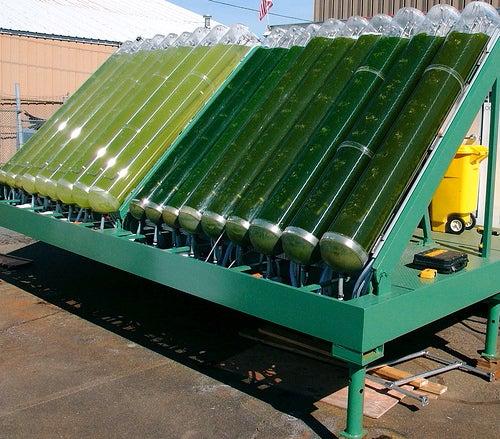 Greening Green Fuels