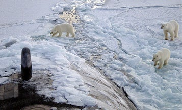 Climate Change Cruise Will Bring Tourists Across The Melted Arctic