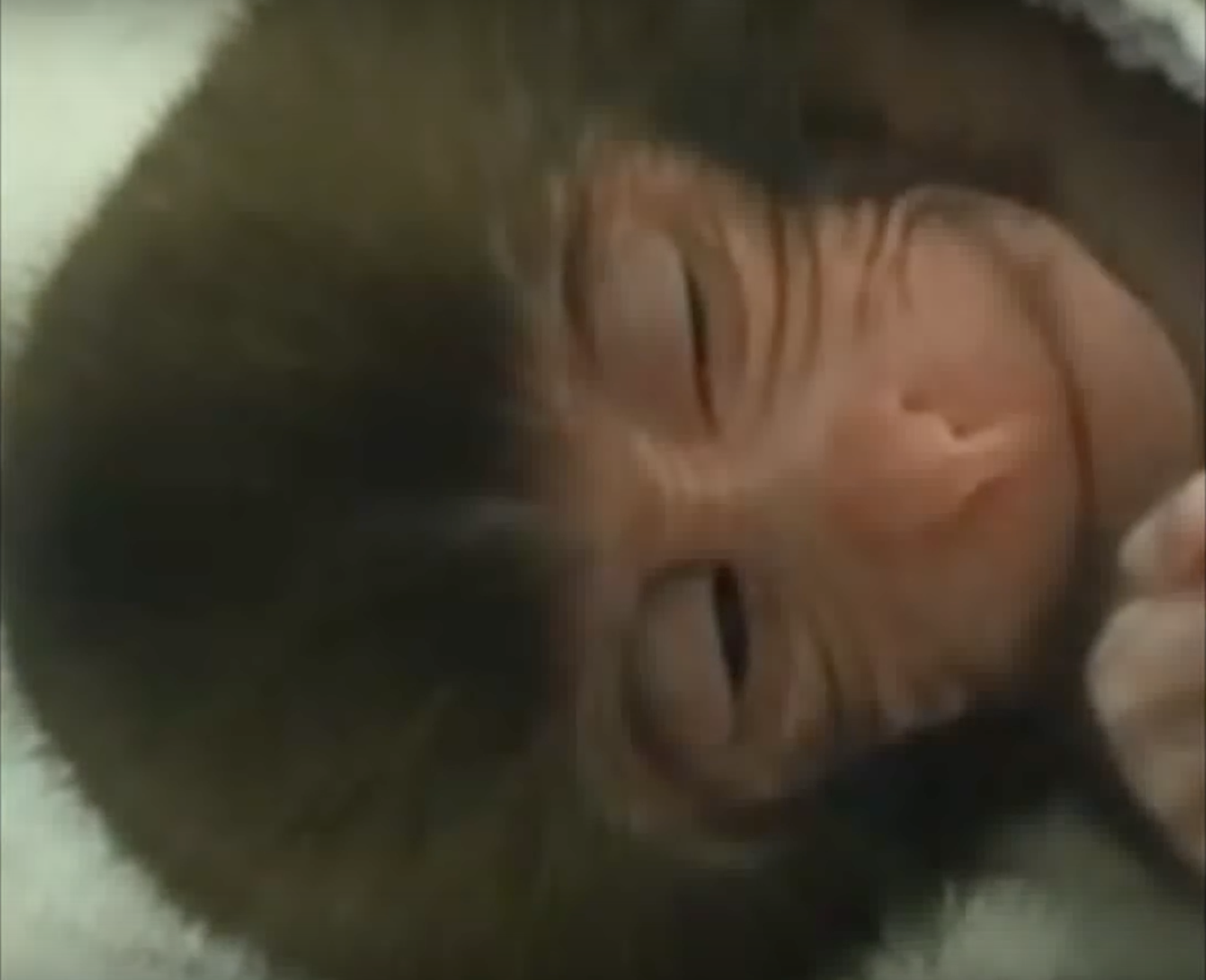 """Watch Baby Macaques """"Smile"""" In Their Sleep"""