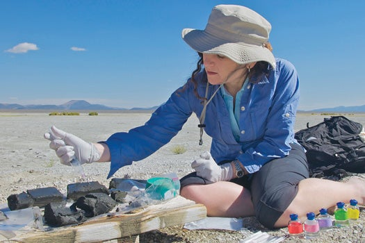 Wolfe-Simon collecting sediment samples