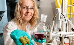 Artificial Enzyme Successfully Used to Neutralize a Natural Plant Poison