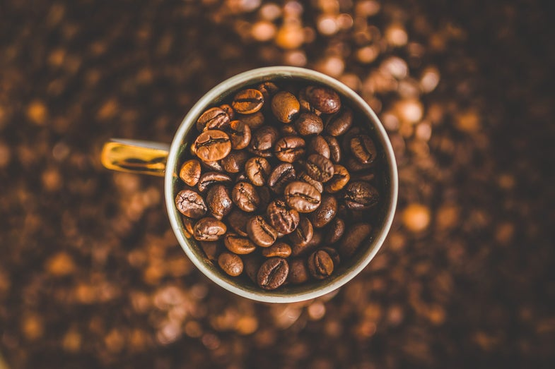 Climate change will make your coffee cost more and taste worse