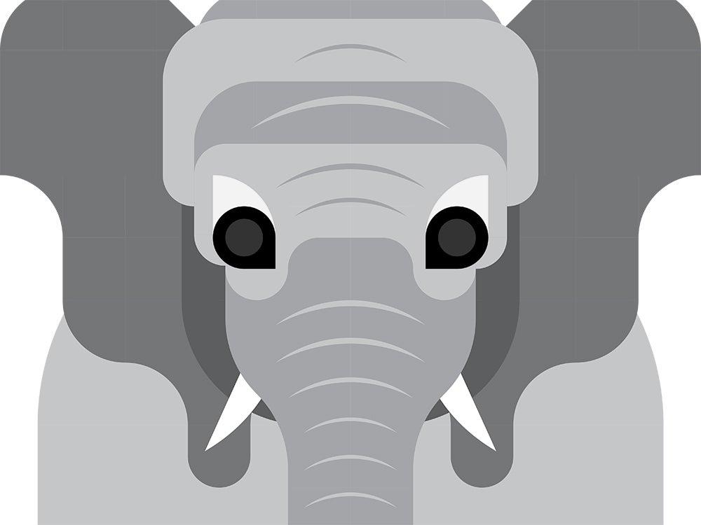 الفيل الأفريقي, بوبساي, بوبيولار ساينس, مجلة بوبساي, الحيوان, مراهقة