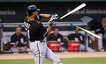 U.S. Forest Service Solves Mystery Of Exploding Baseball Bats