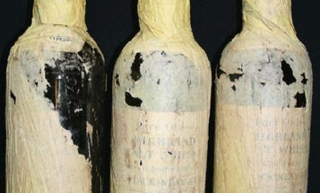 How Scottish Scientists Re-Created a Hundred-Year-Old Whisky