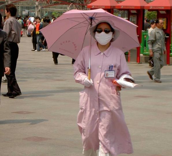 Scientists Create Hybrid, Air-Transmissible Bird Flu Strains