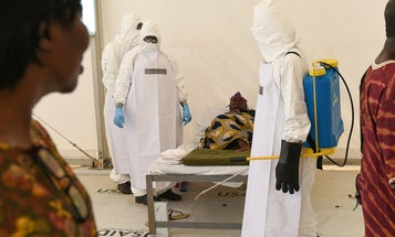 The Hot Zone: Ending Ebola (For Now)?