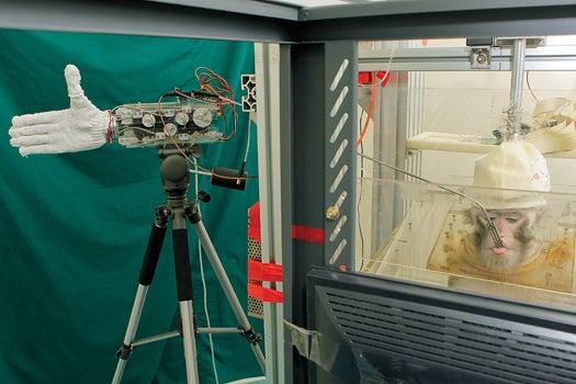 Megapixels: A Monkey Controls a Robot Hand With its Mind