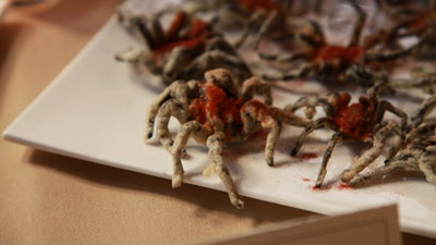 Why Aren't We Eating More Bugs?
