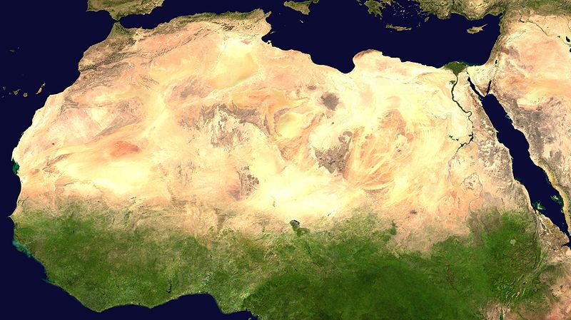 Containing the Sahara with Bacteria-Built Walls