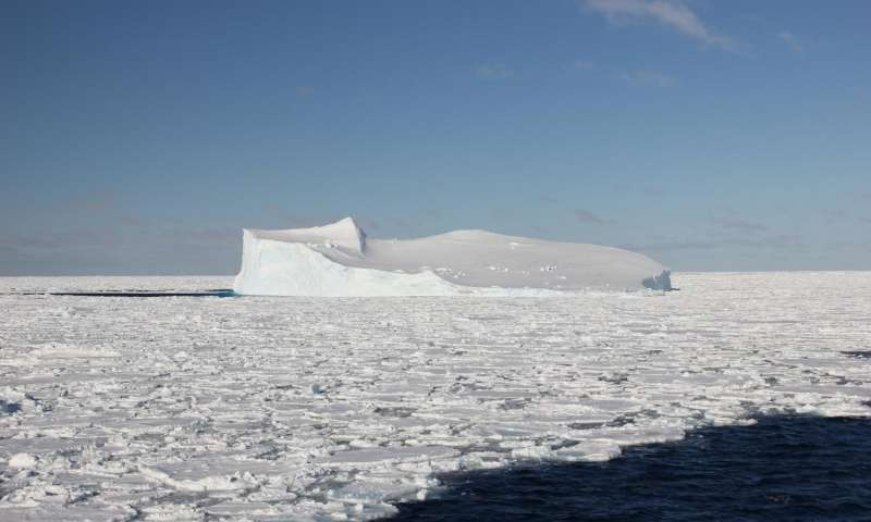 Newly-Discovered Antarctic Bacteria Could Be Cramming Seafood With Mercury