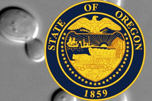 Ale Yeast Running For Official State Microbe Of Oregon