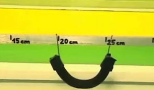 Video: Magnetic Gels That Swim, Shimmy, and 'Walk'