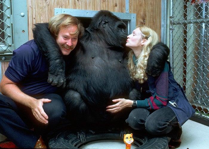 Koko hugging her caretakers
