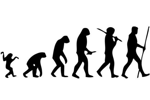 Did Rock Climbing Help Us Start Walking Upright?