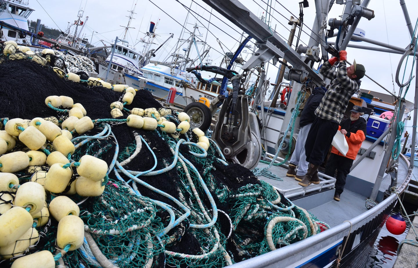We're Catching Millions Of Tons More Fish Each Year Than We Report