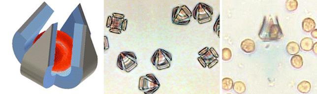 Tiny Traps Capture Individual Blood Cells
