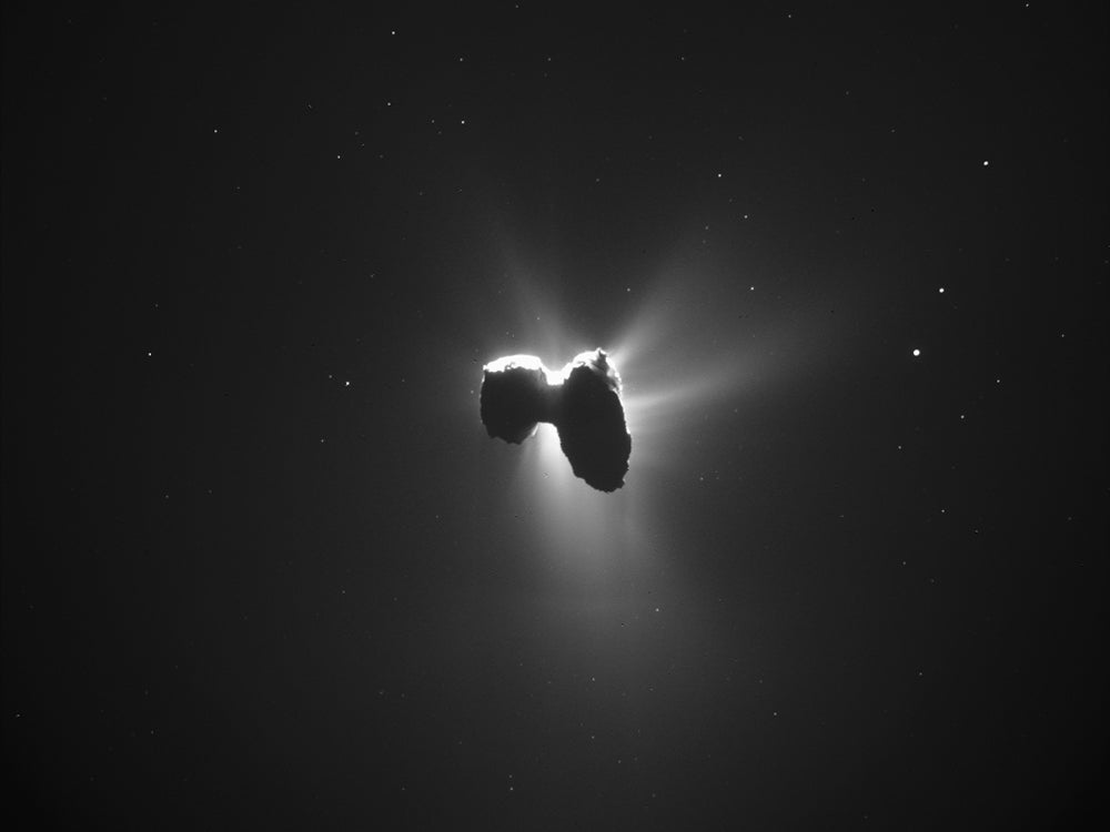 comet from rosetta image gallery