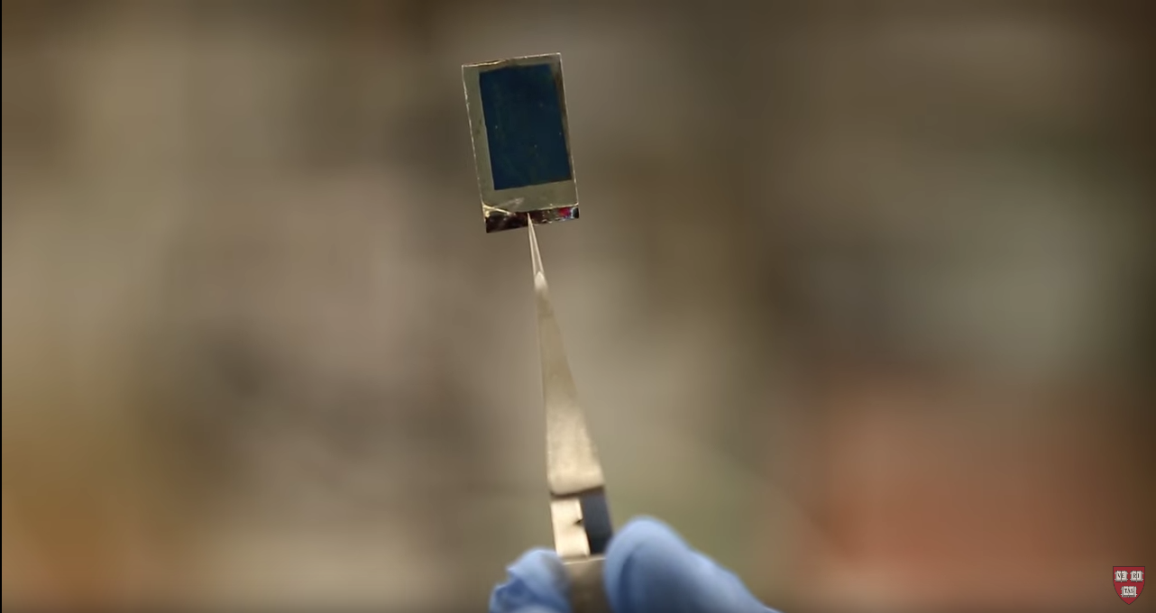 Bionic Leaf Is 10 Times Better At Photosynthesis Than Real Plants