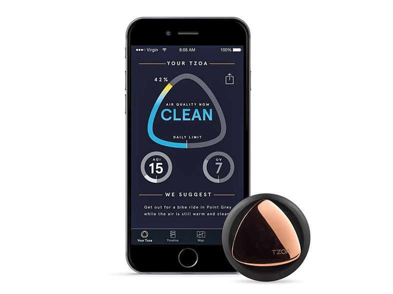A Wearable Pollution Monitor