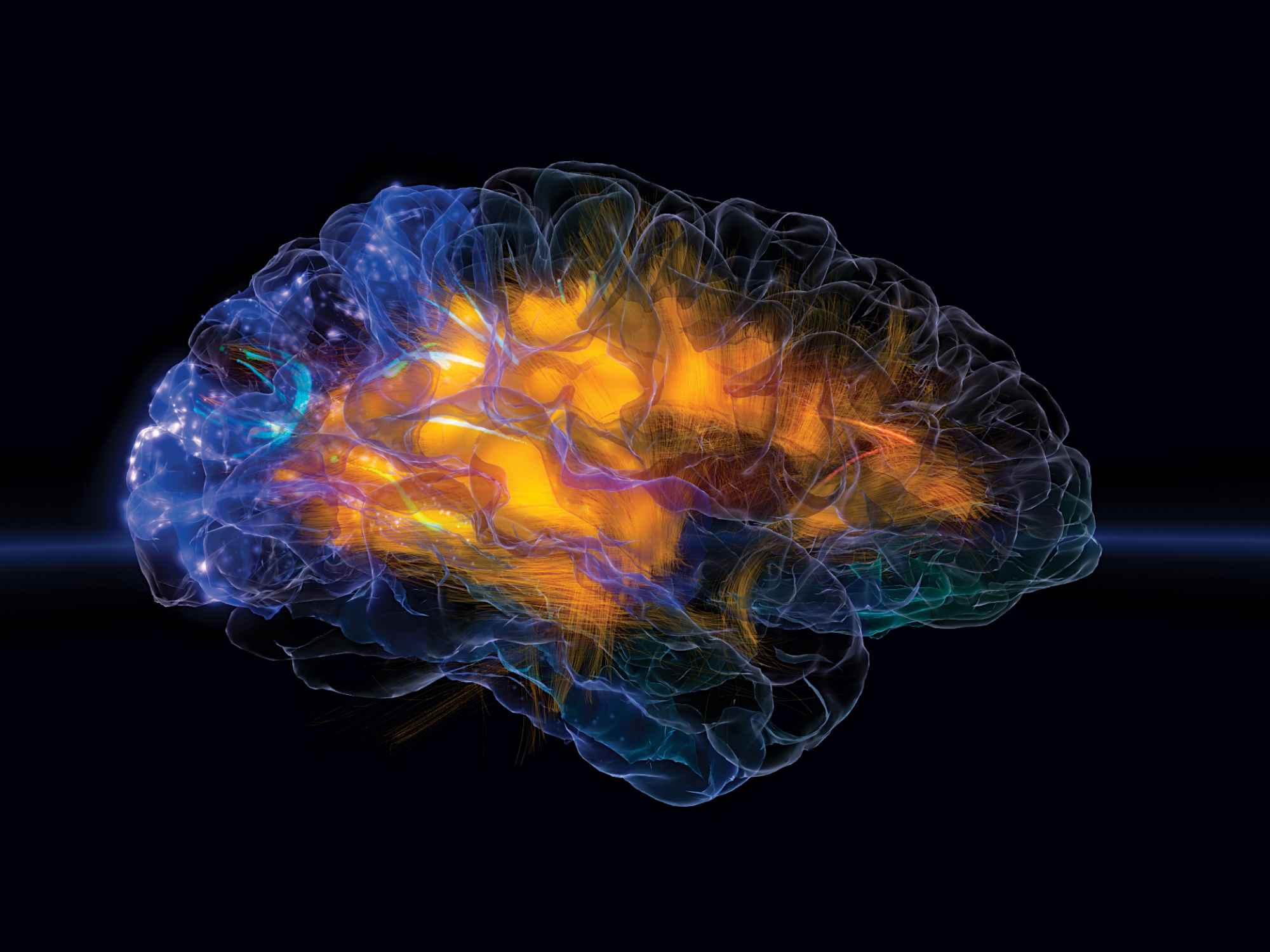 Radiation In Space May Change Astronauts' Brain Structure